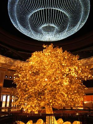 David goldstein winner at wynn casino casino moneybookers payouts